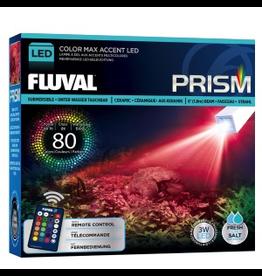 FLUVAL (D) FLUVAL PRISM COLOR MAX ACCENT LED
