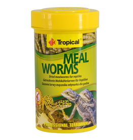 TROPICAL (W) Tropical Dried Meal Worms - 13 g