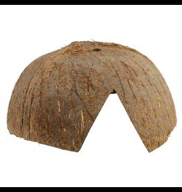 JURASSIC (W) Jurassic Reptile Products Coconut Hut Hide