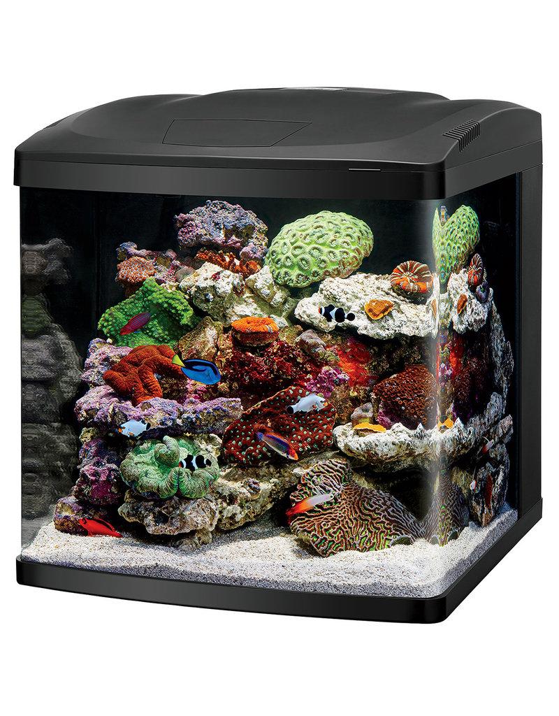 CORALIFE (W) Coralife LED BioCube - 32 gal