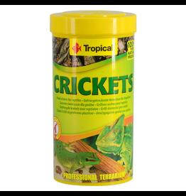 TROPICAL (W) Tropical Dried Crickets - 25 g