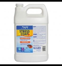 API (W) Stress Coat+ - 1 gal
