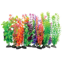 UNDERWATER TREASURES Plant on Rock Mixed - Large - 10 pk (Box)