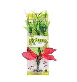 MARINA (W) MA Ntl Red&Grn Pickerel Silk Plant,Lge