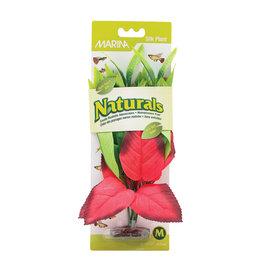MARINA (W) MA Ntl Red&Grn Pickerel Silk Plant,Med