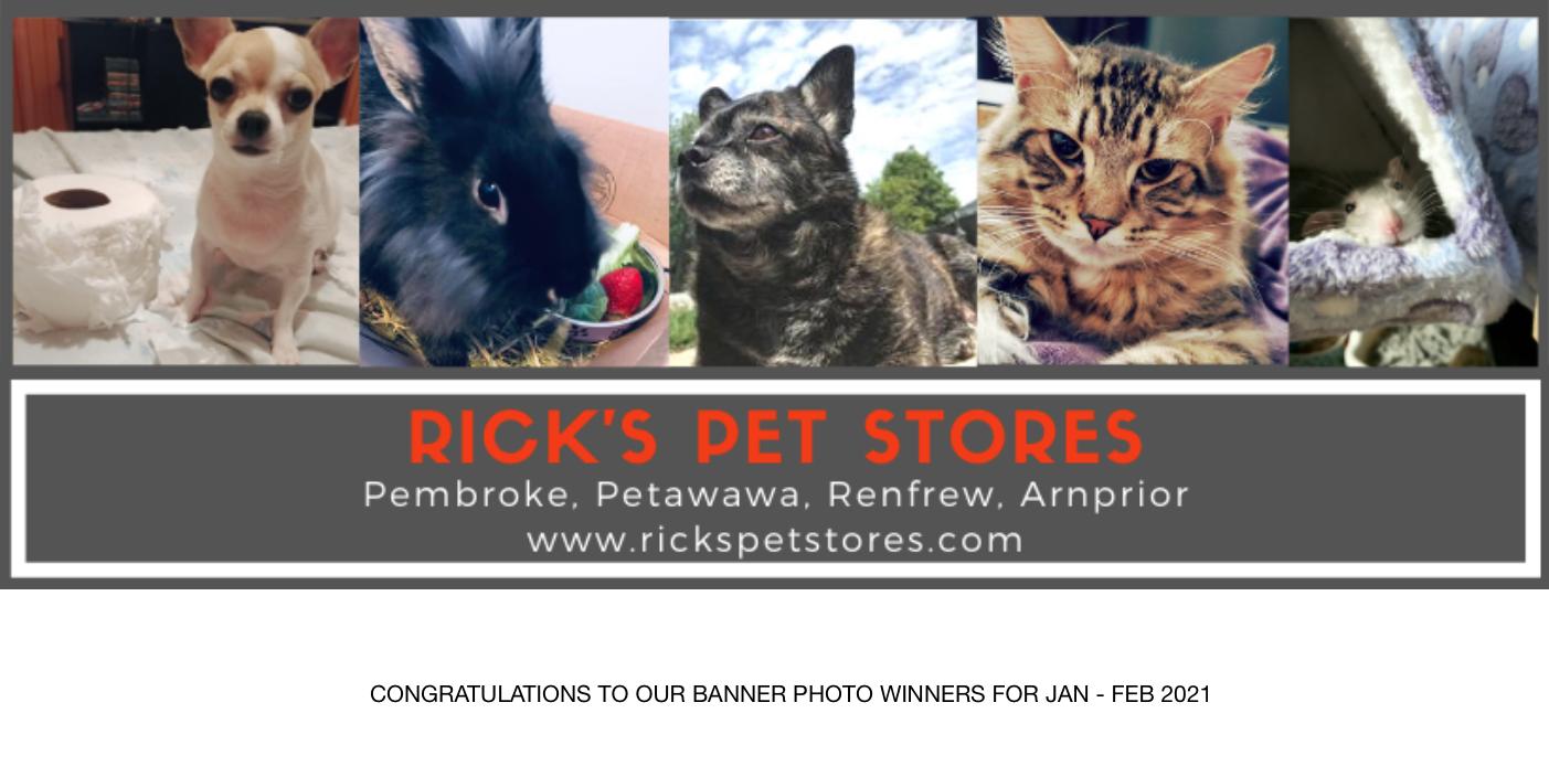 Banner Winners Feb