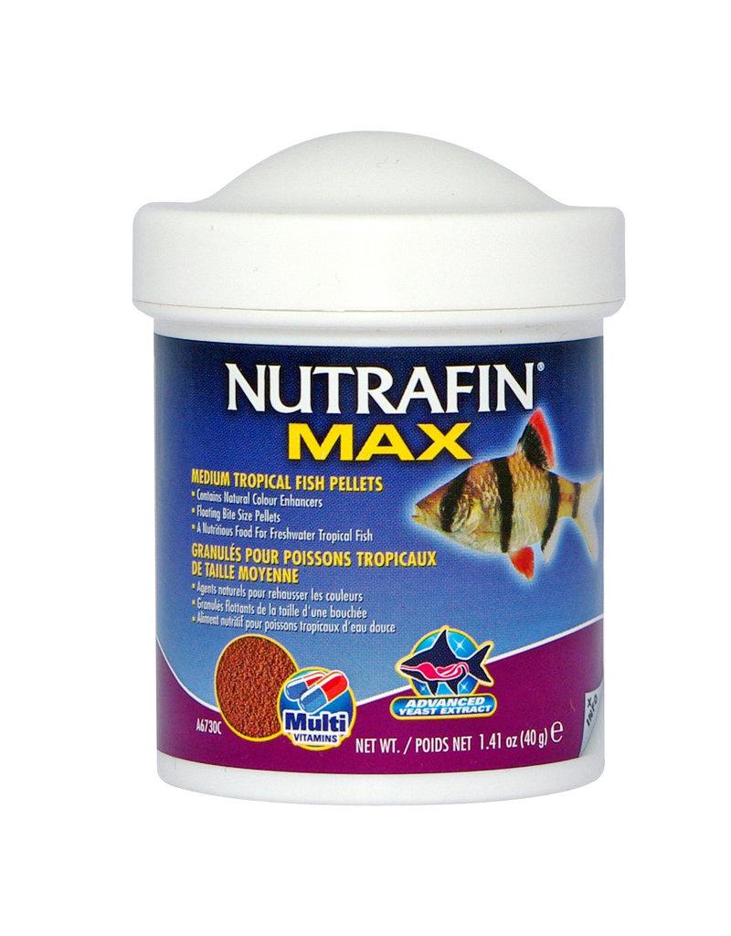 NUTRAFIN NFM Md.Tr.Fsh.Pellets., 40g (1.41oz)-V