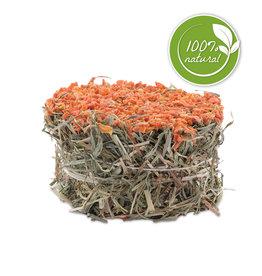 LIVING WORLD Living World Green Botanicals Hay Cake - Carrot - 75 g (2.6 oz)