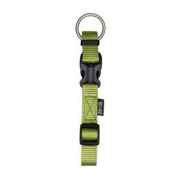 ZEUS (D) Zeus Adjustable Nylon Dog Collar - Olive - Medium - 1.5 cm x 28 cm-40 cm (1/2in x 11in-16in)