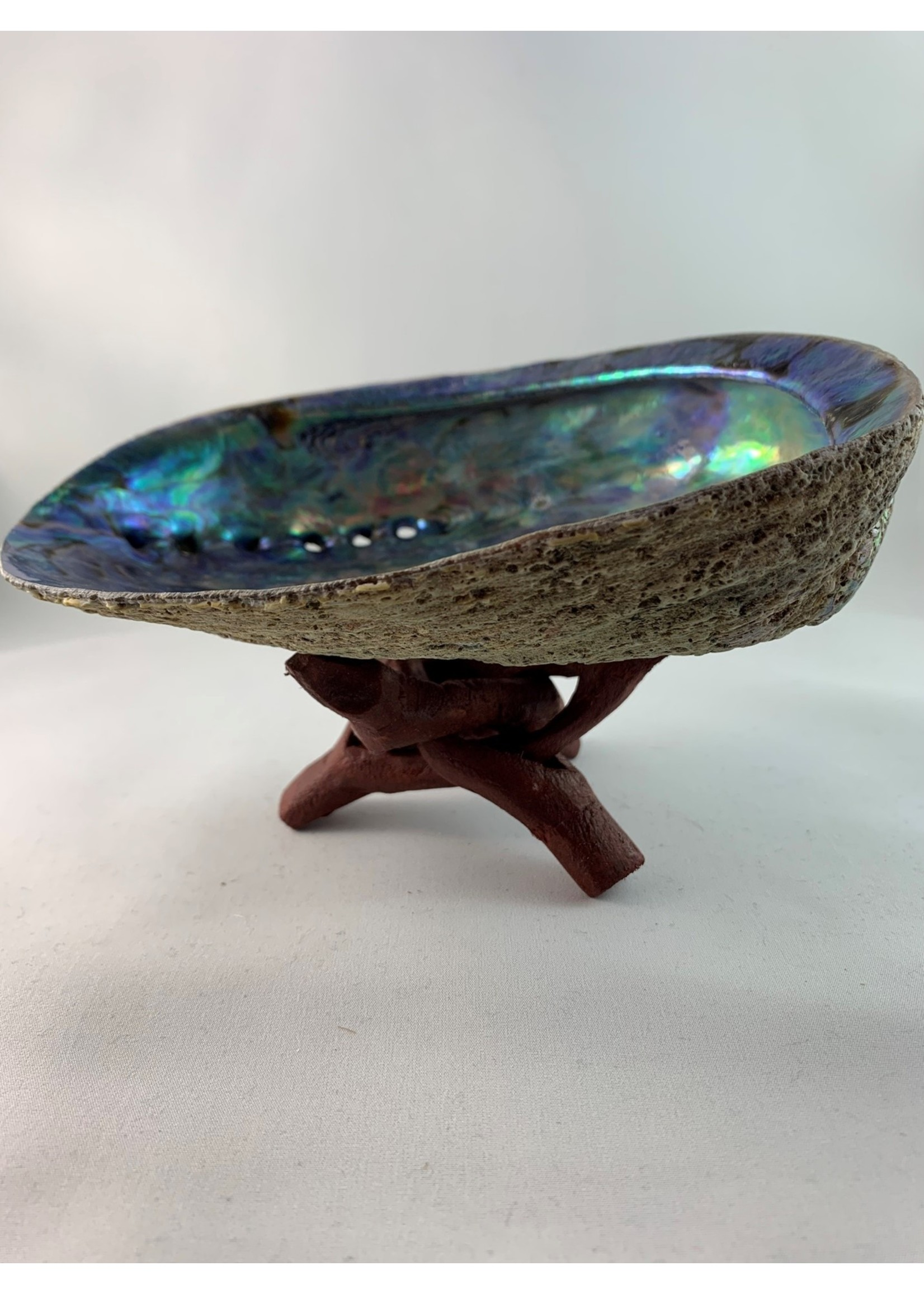Wooden Abalone Shell Stand - 4 Inches