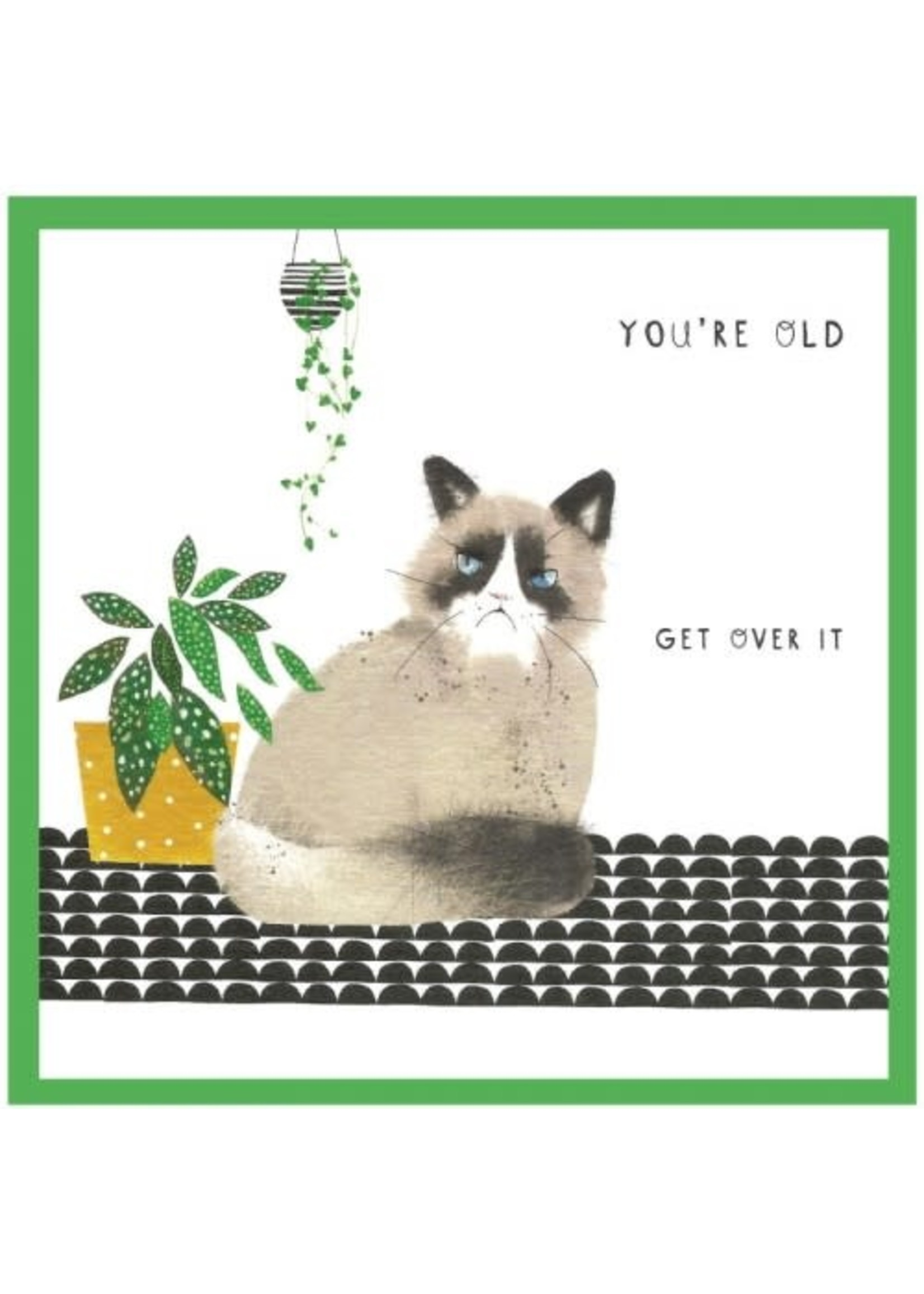 Cinnamon Aitch You're Old, Get Over It - Margo Greeting Card