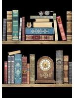 Bug Art Bookshelves