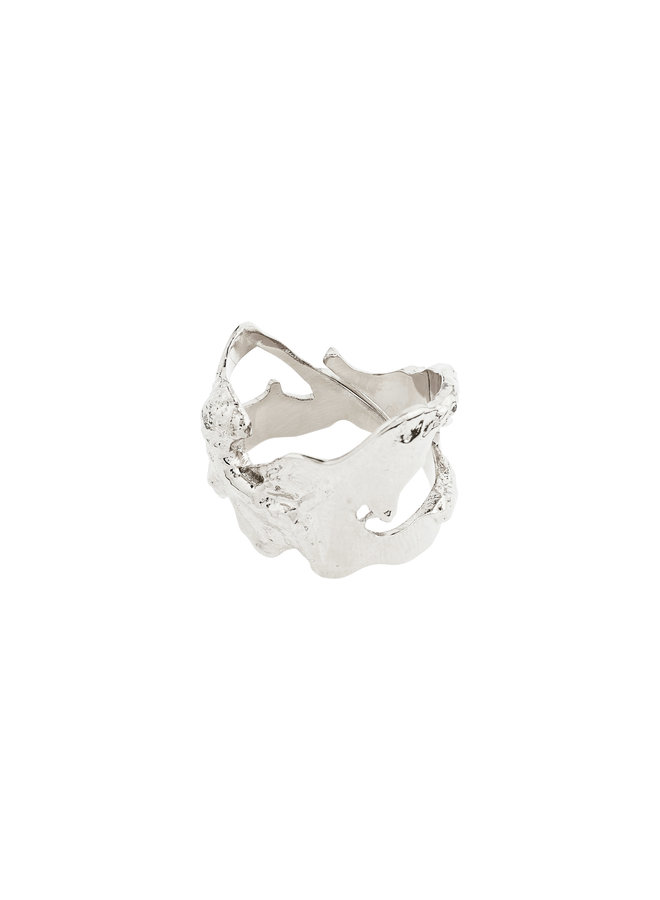 Ring Compass Silver Plated - 102116004
