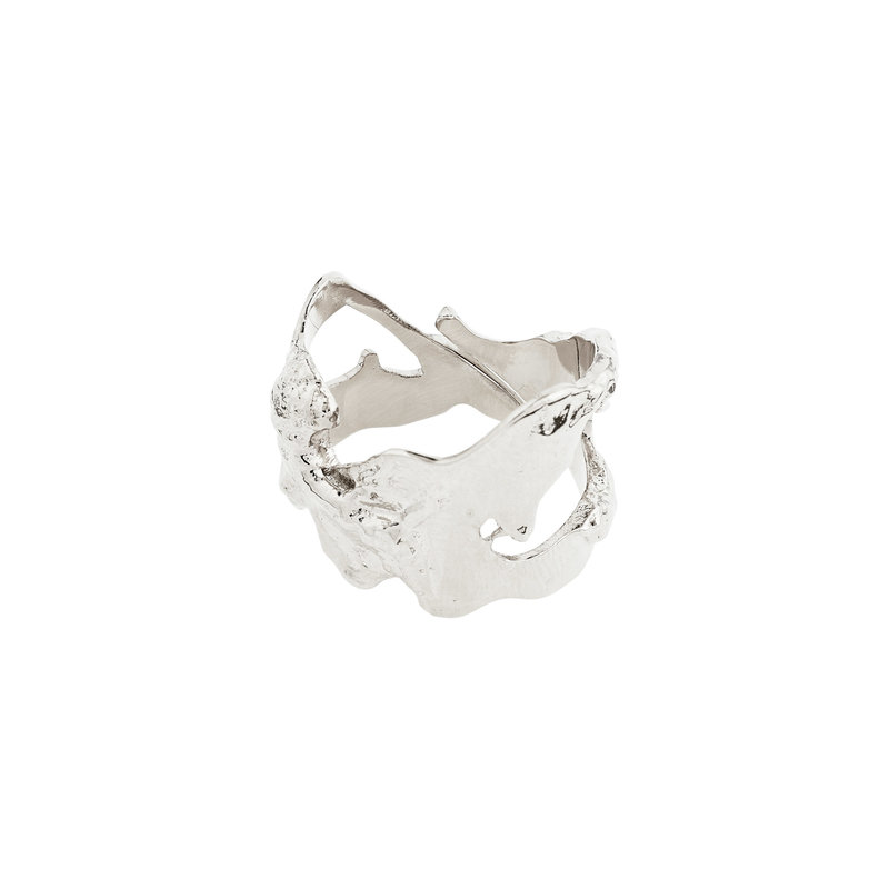 Pilgrim Ring Compass Silver Plated - 102116004