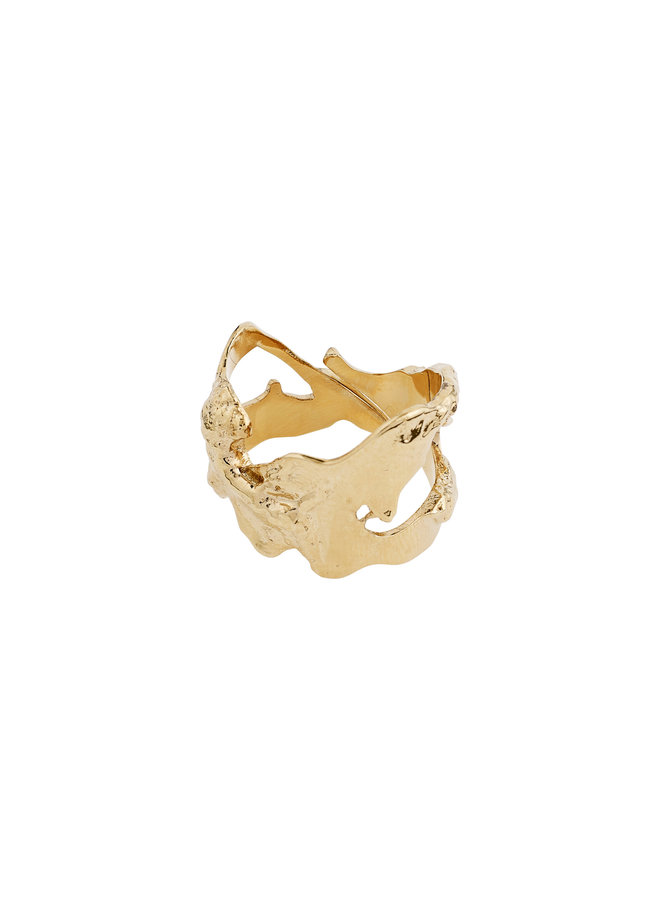 Ring Compass Gold Plated - 102112004