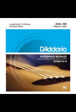 Daddario 5-String Acoustic Bass 45-130