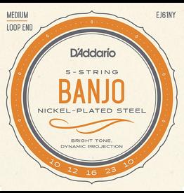 NY Steel Banjo 10-23