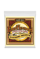 Ernie Ball Ernie Ball Earthwood 12-String Ernie Ball - Earthwood - Acoustic 12-String