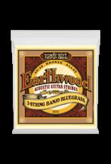 Ernie Ball .009/.009 Earthwood Banjo 5- String Banjo Strings
