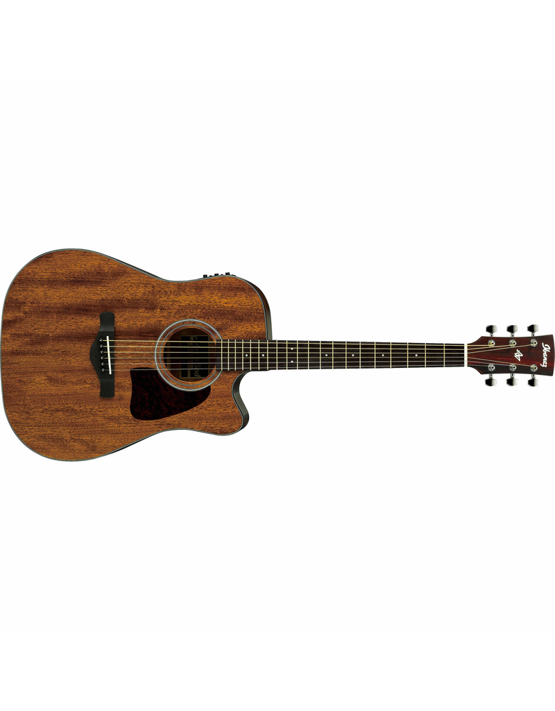 Ibanez AW54CE OPN Artwood Dreadnought