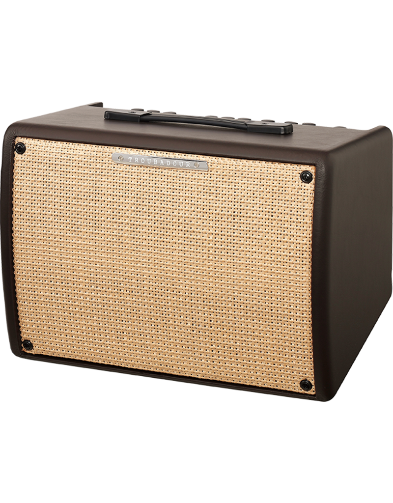 Ibanez T30II-S  Troubadour 30W Acoustic Amp