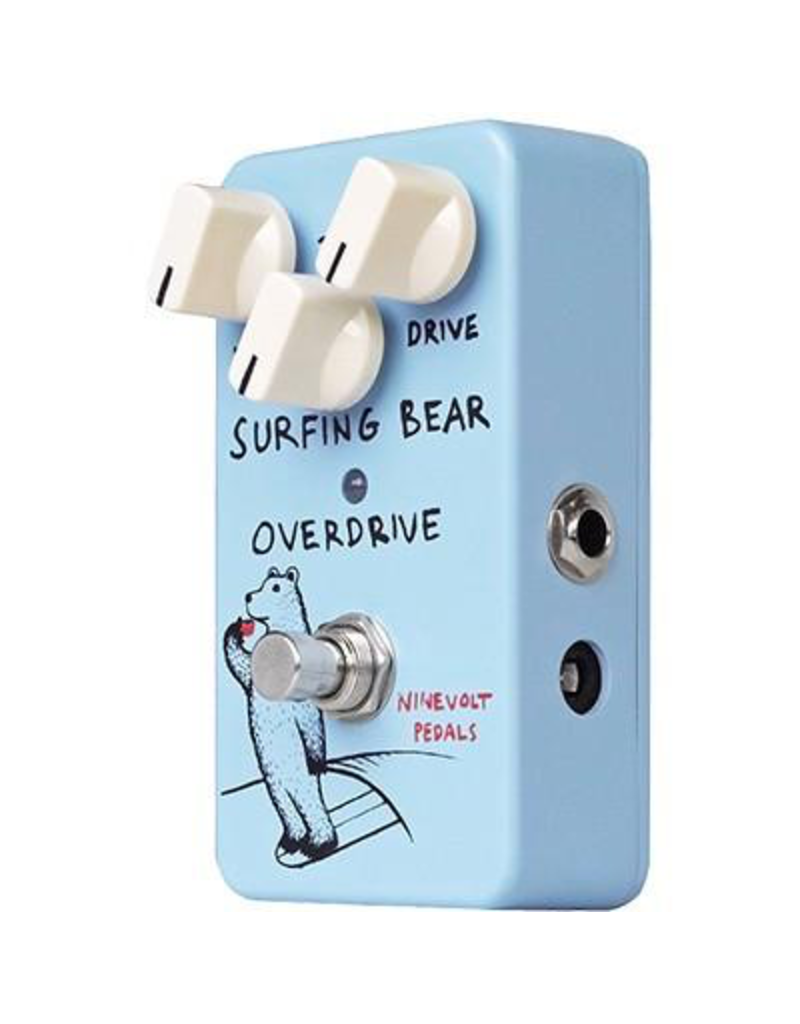 Animals Pedals Surfing Bear Overdrive