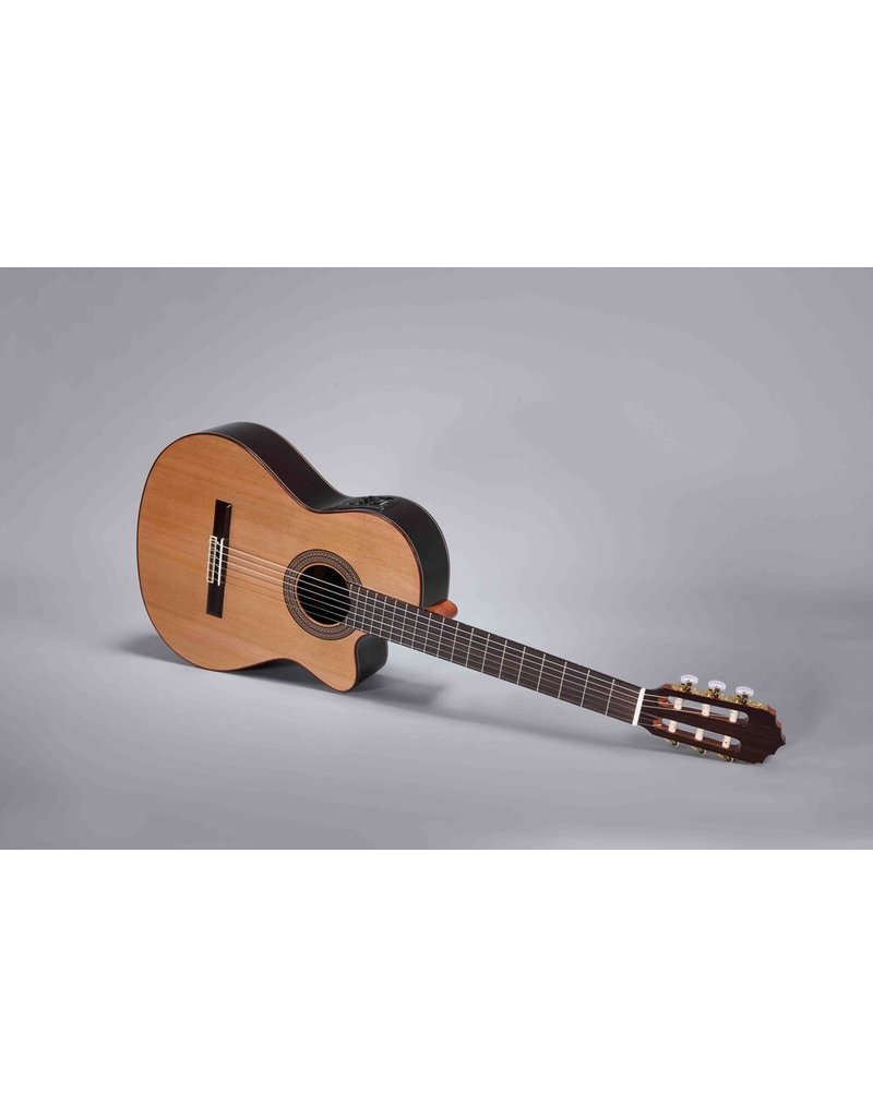 Altamira N-300CE Cutaway with Fishman EQ Pickup / Solid Cedar Top / Laminate Indian Rosewood Back and Sides / Gloss Finish