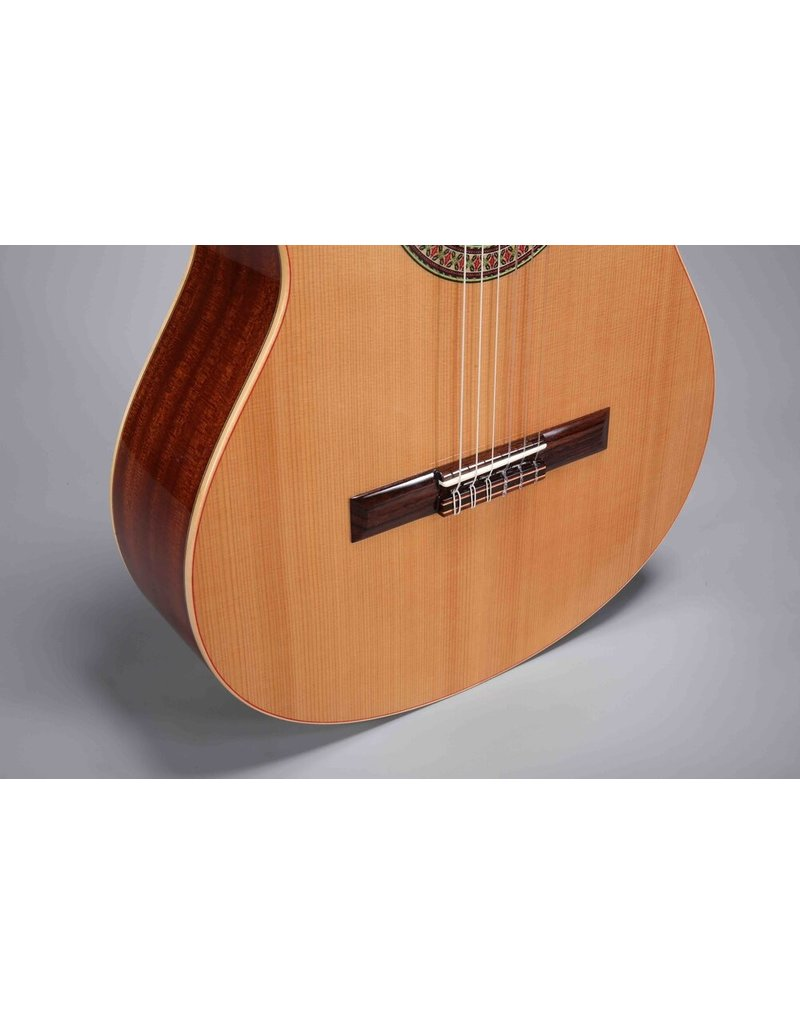 Altamira N-100 Entry Level / Solid Cedar Top / Laminate African Mahogany Back and Sides / Gloss Finish