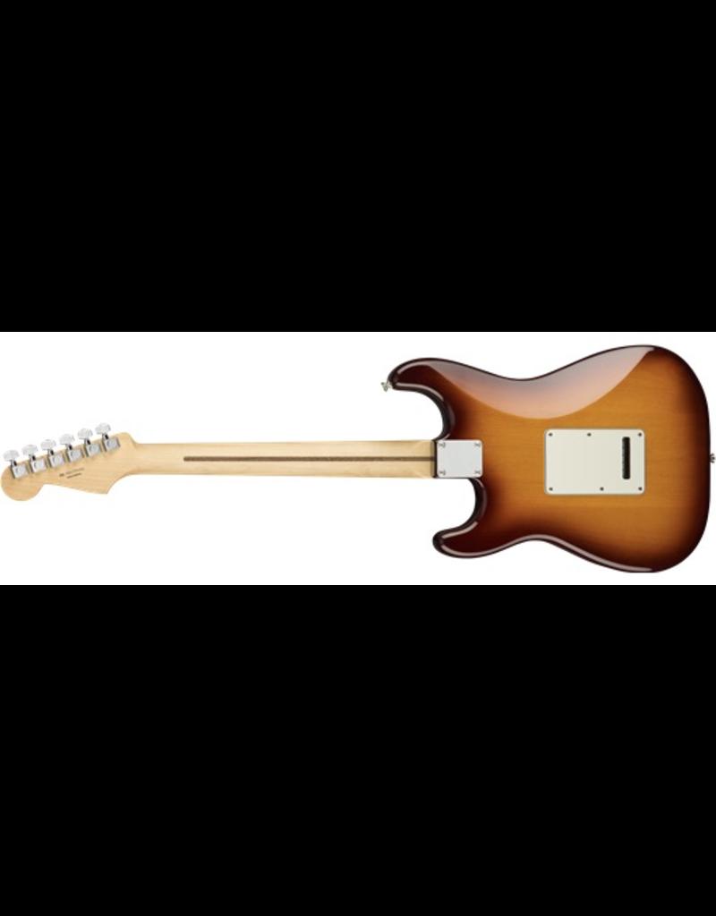Fender Player Stratocaster Plus Top, Pau Ferro Fingerboard, Tobacco Sunburst