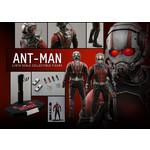Hot Toys Ant Man - Ant Man MMS308