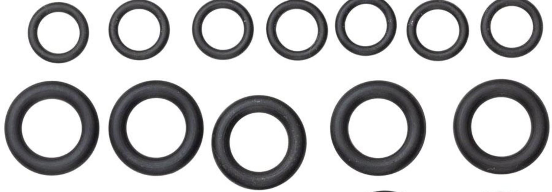 SRAM, Pro Bleed Syringe - O-ring Kit, Fitting O-ring, Coupling O-rings & Bleeding Edge O-rings - Qty 10 each, Kit