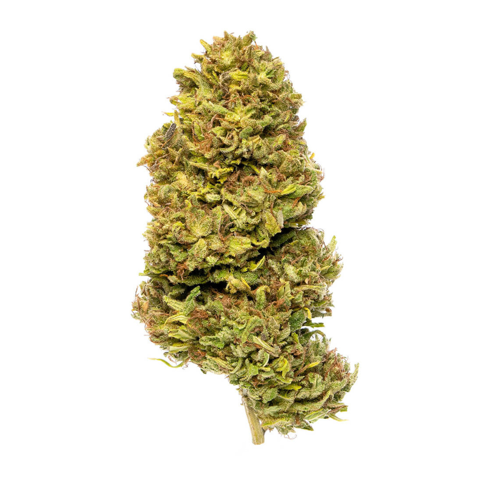Lancaster County Cannabis LCC Hawaiian Haze CBD Flower