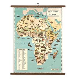 Cavallini Papers Animal Kingdom School Chart