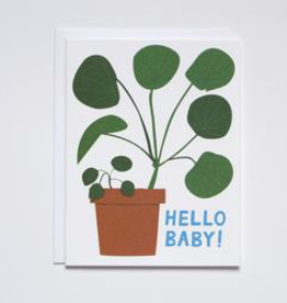 Banquet Workshop Hello Baby Houseplant Card