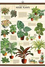 Cavallini Papers Cavallini Papers House Plants School Chart