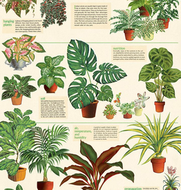 Cavallini Papers Cavallini Papers House Plants Wrap