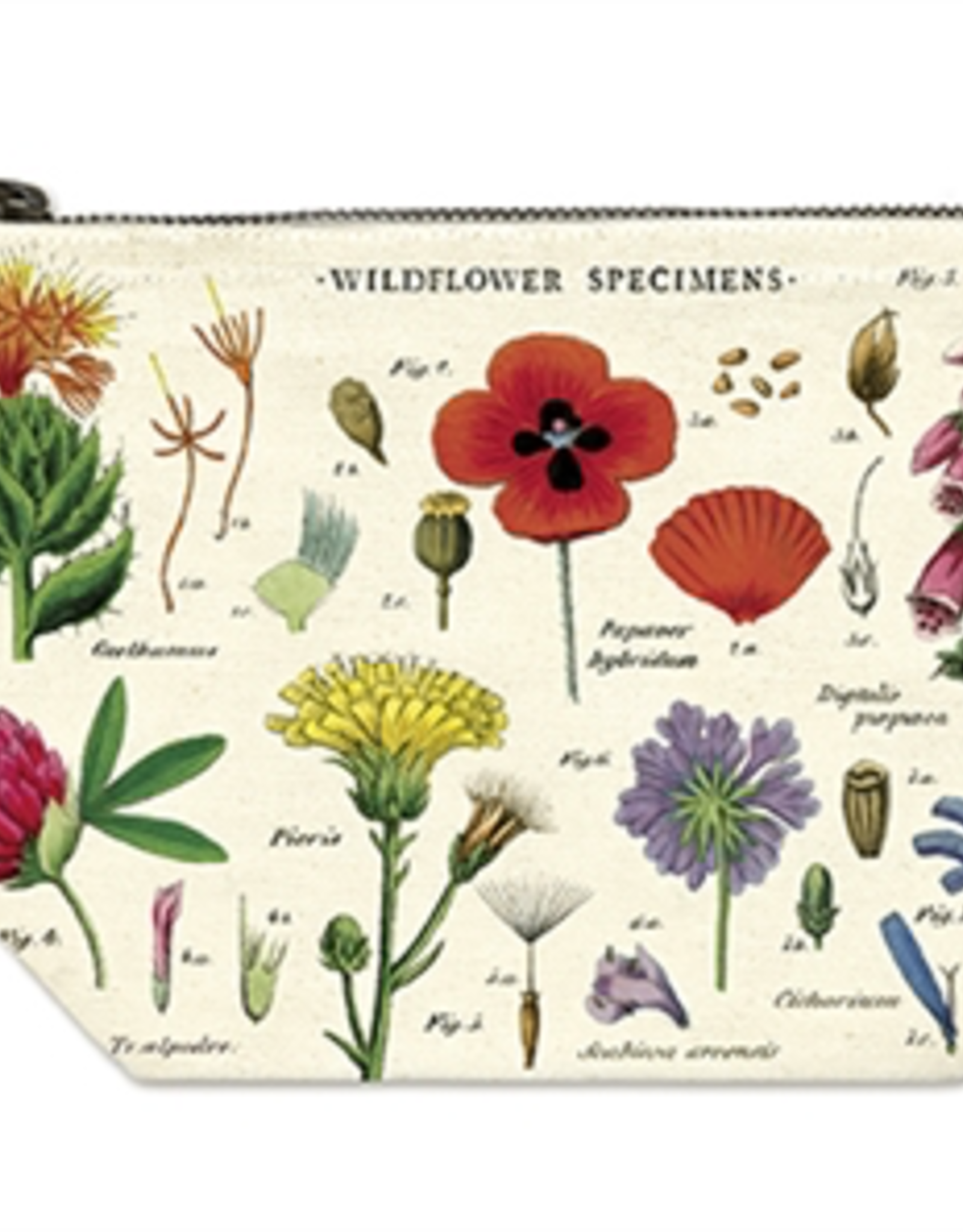 Cavallini Papers Cavallini Papers Wildflowers Pouch