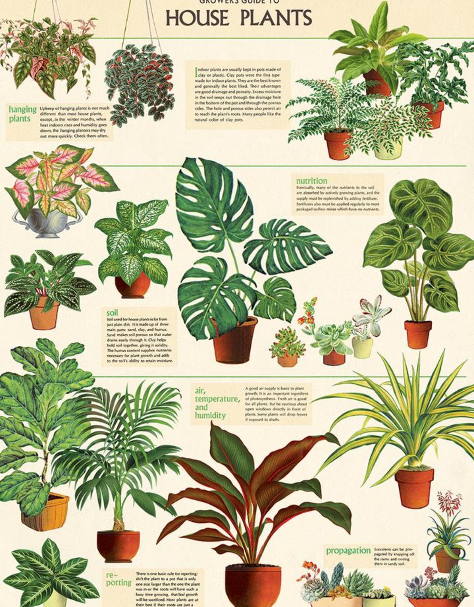 Cavallini Papers Cavallini Papers House Plants Wrap
