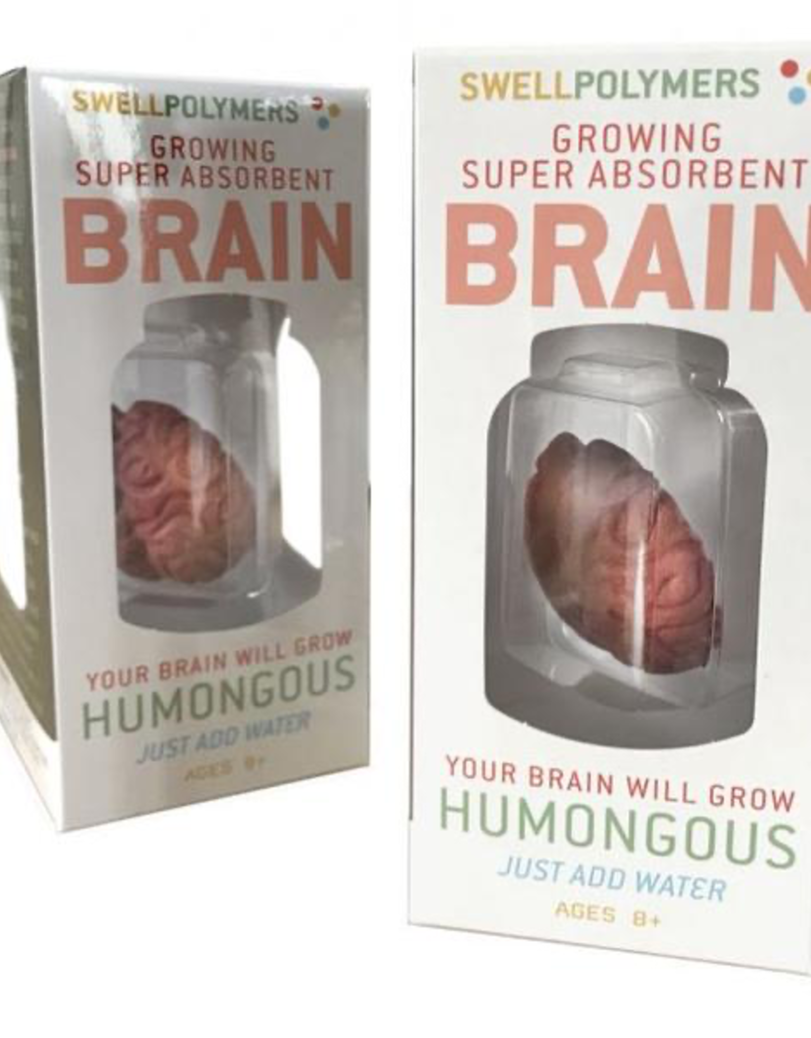 TTG TTG Growing Brain