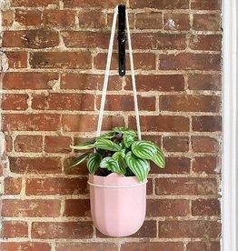 Wally Gro Loop Planter-Rose