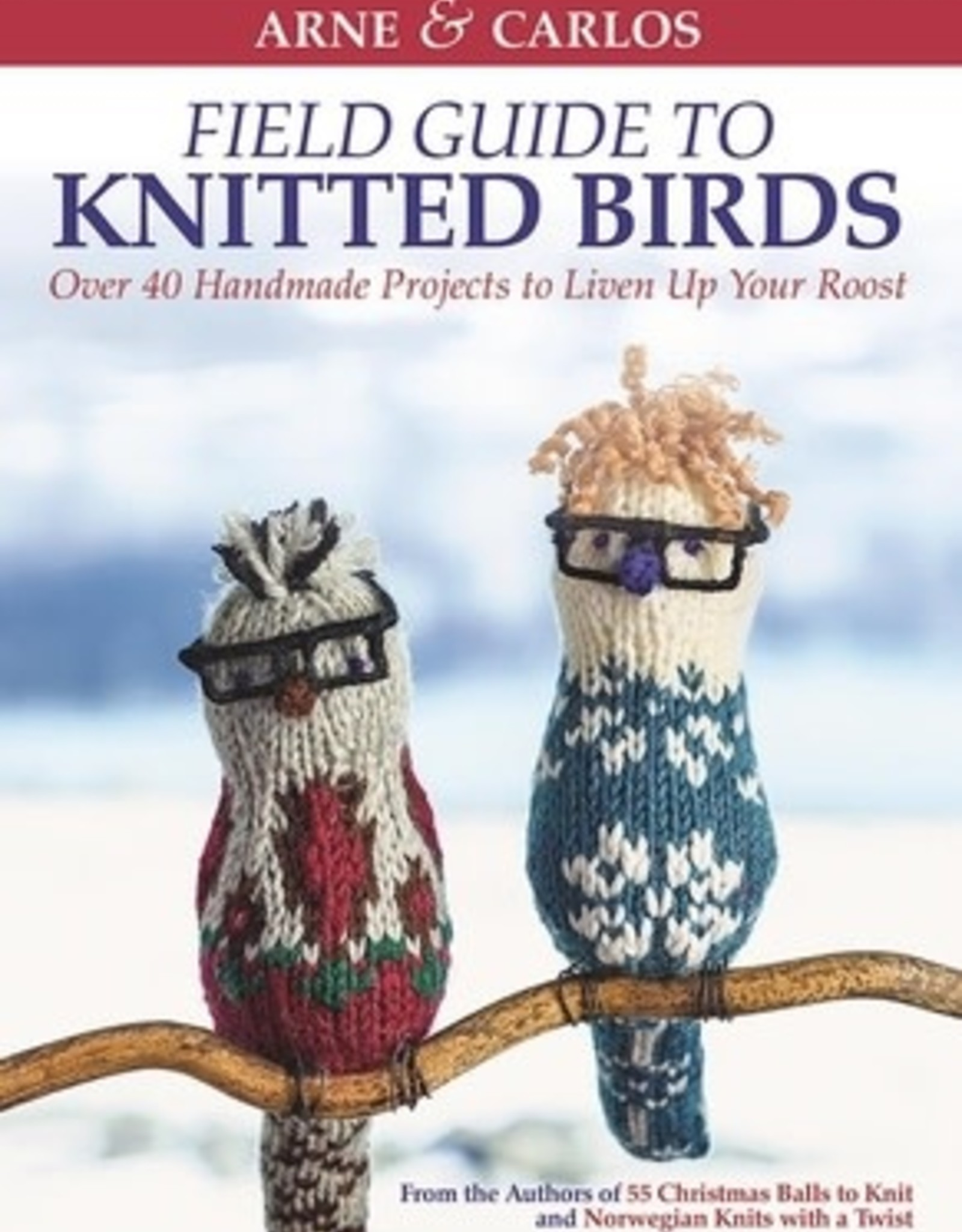 Raincoast Books Raincoast Books Field Guide to Knitted Birds