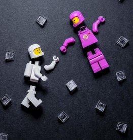 Raincoast Books Lego Minifigure Journal