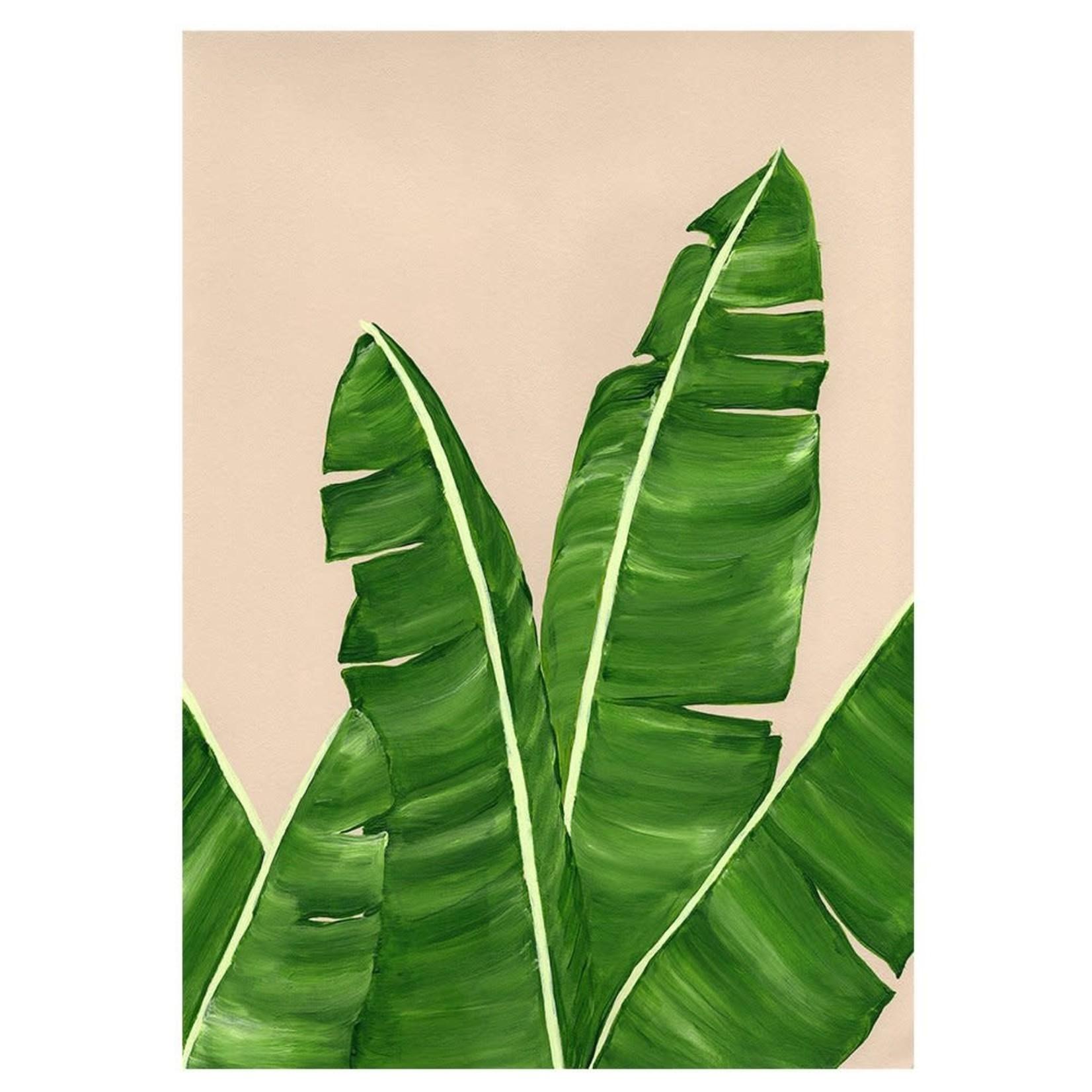 Carte Stengun - GREENHOUSE BANANA