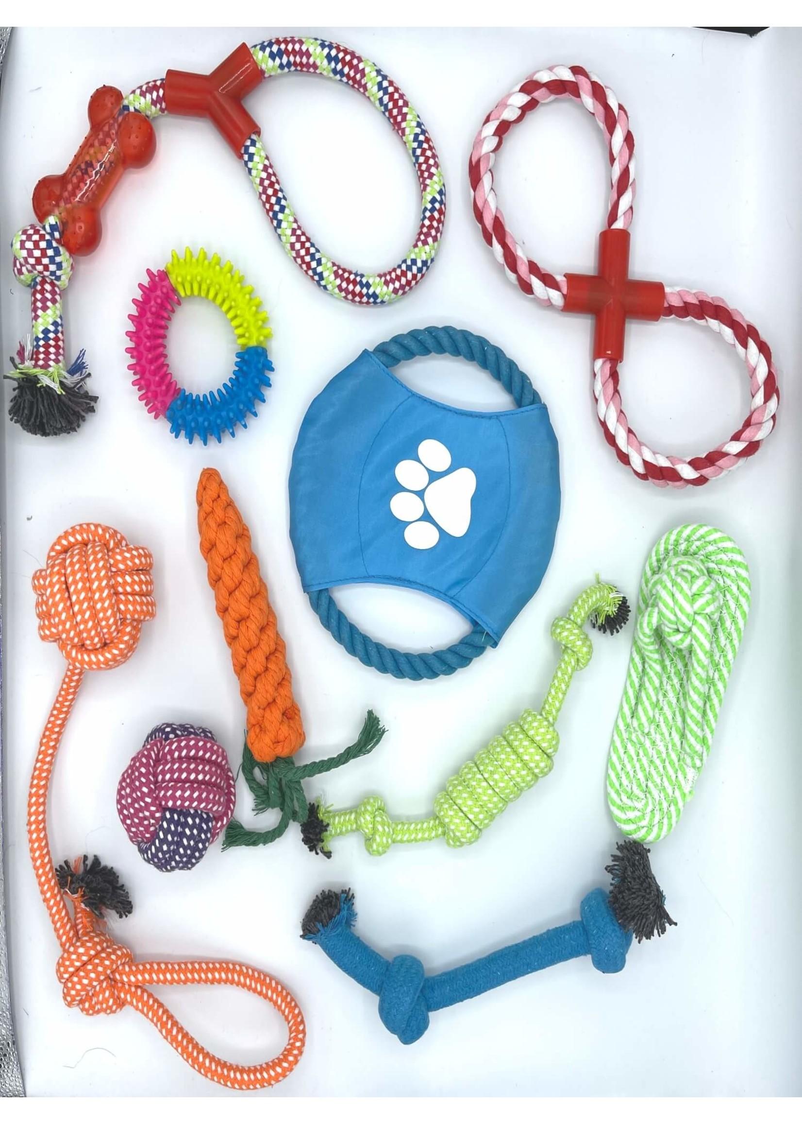 10 Piece Dog Toy Set
