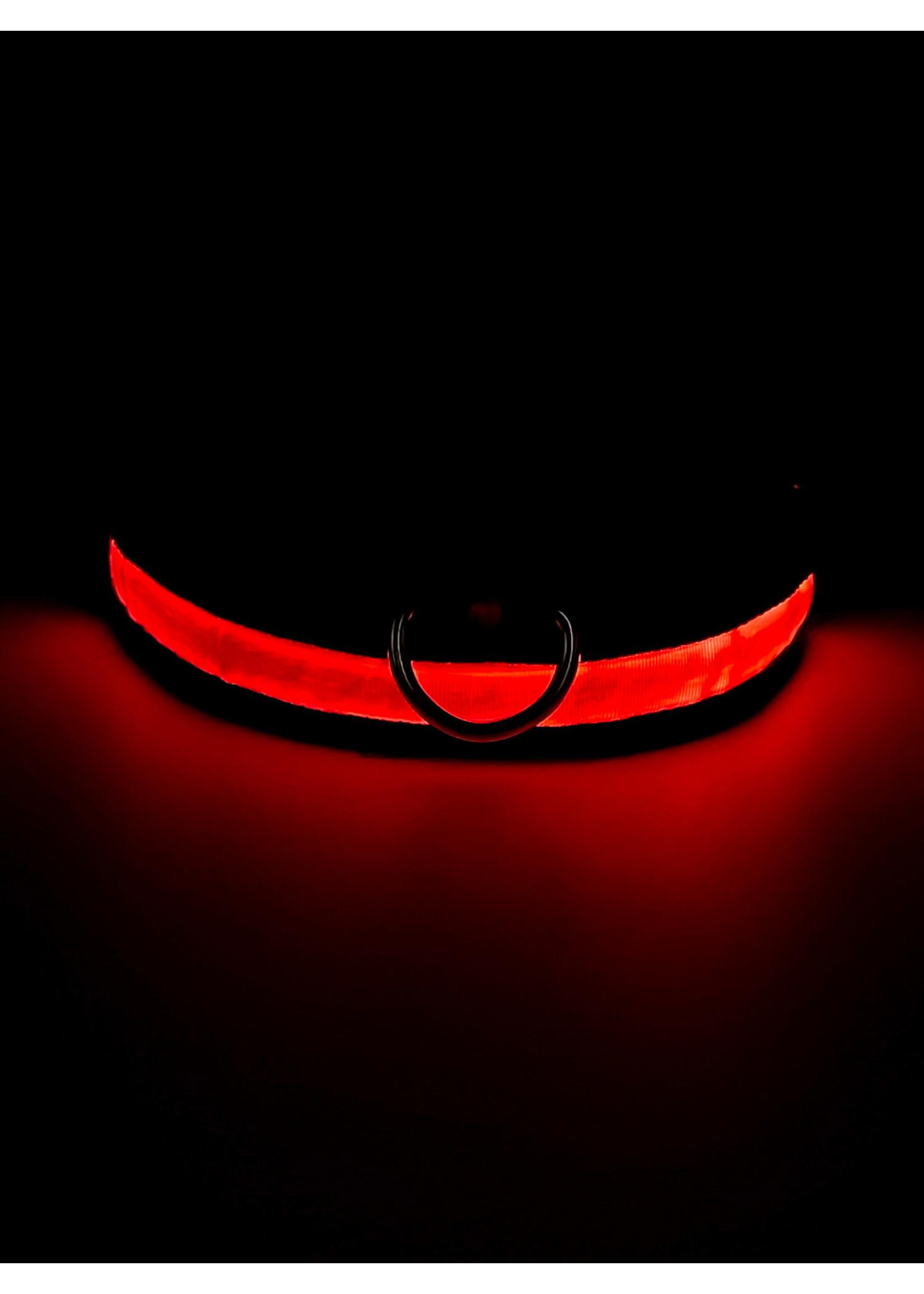 LED Adjustable Dog Collar