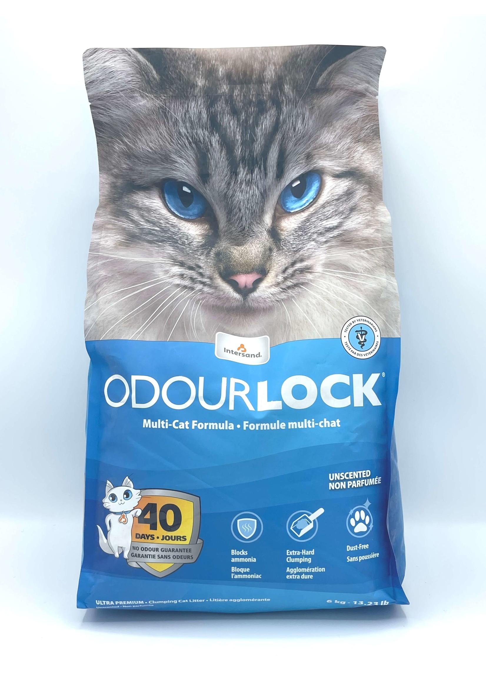Intersand Intersand 12 lb. Odor Lock Unscented Litter