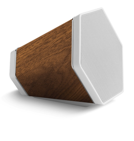 RECOVER RECOVER OUTLIER SPEAKER WALNUT