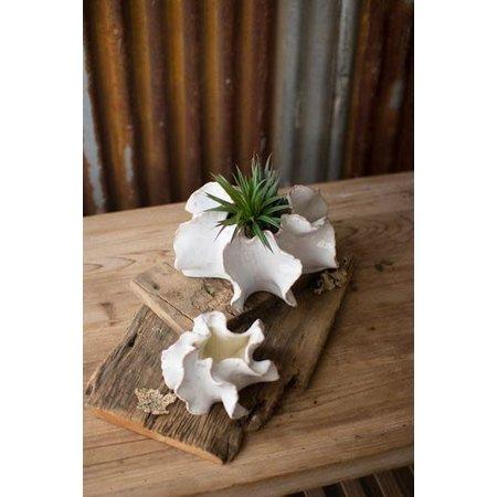 Kalalou Set Of Two Organic Ceramic Planters