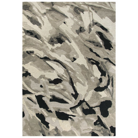 Rizzy CNP103 8'x10' Rug