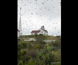 Bird Migration.